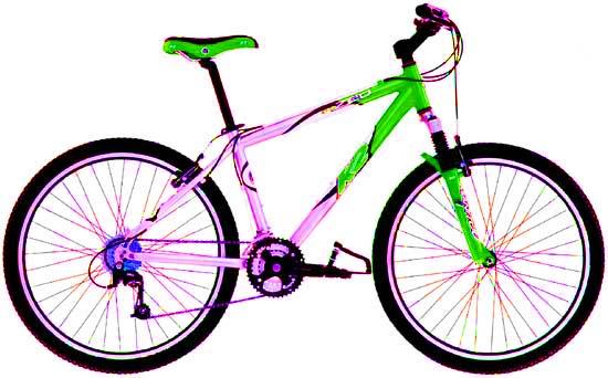 Раскраска велосипедов от 400 руб.